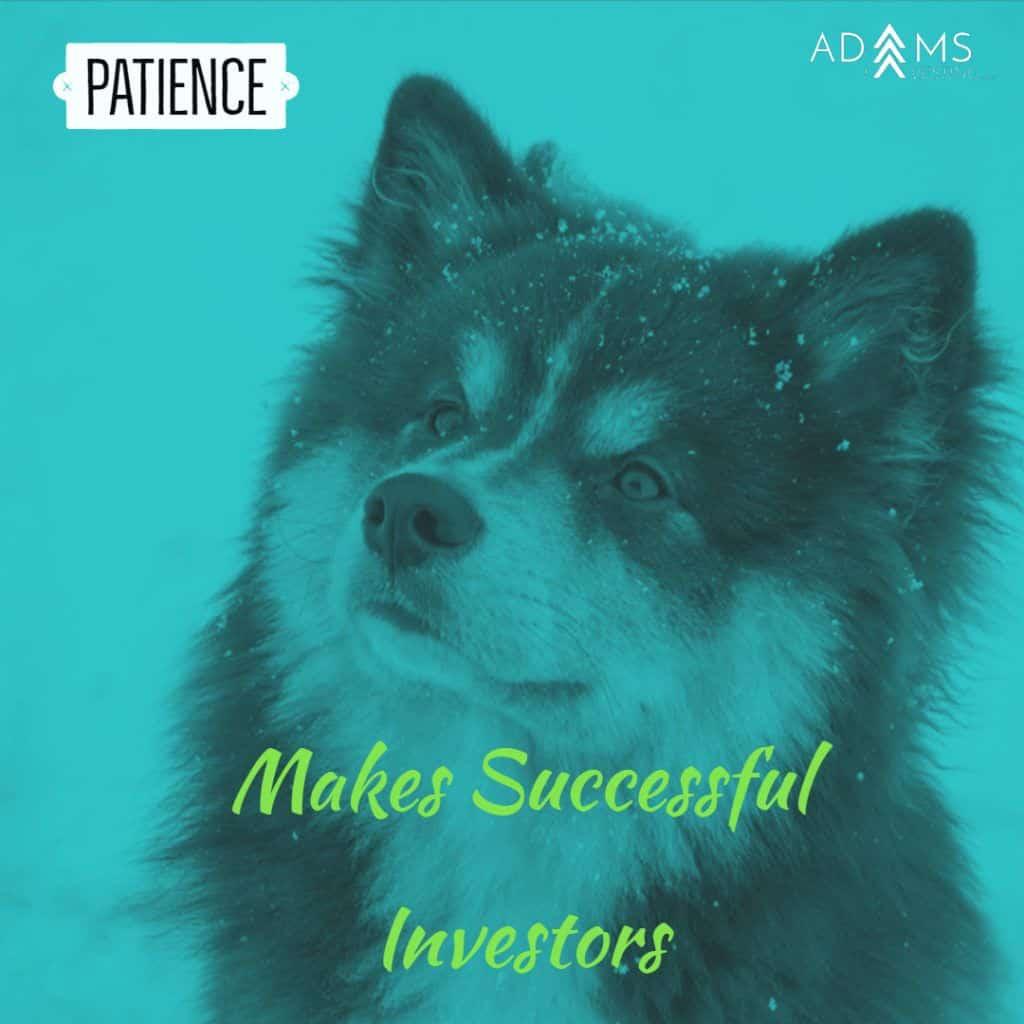 Patient Investor